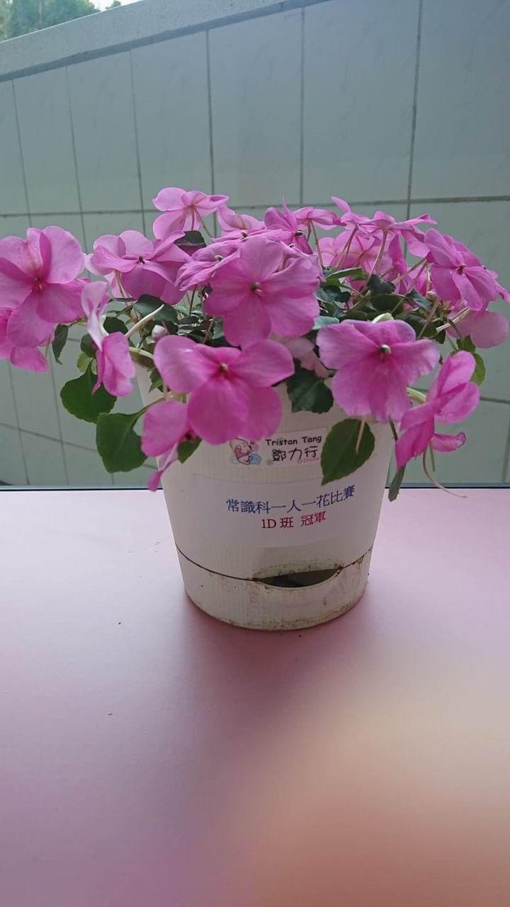 https://plkcjy.edu.hk/sites/default/files/diao_zheng_da_xiao_1d_guan_.jpg