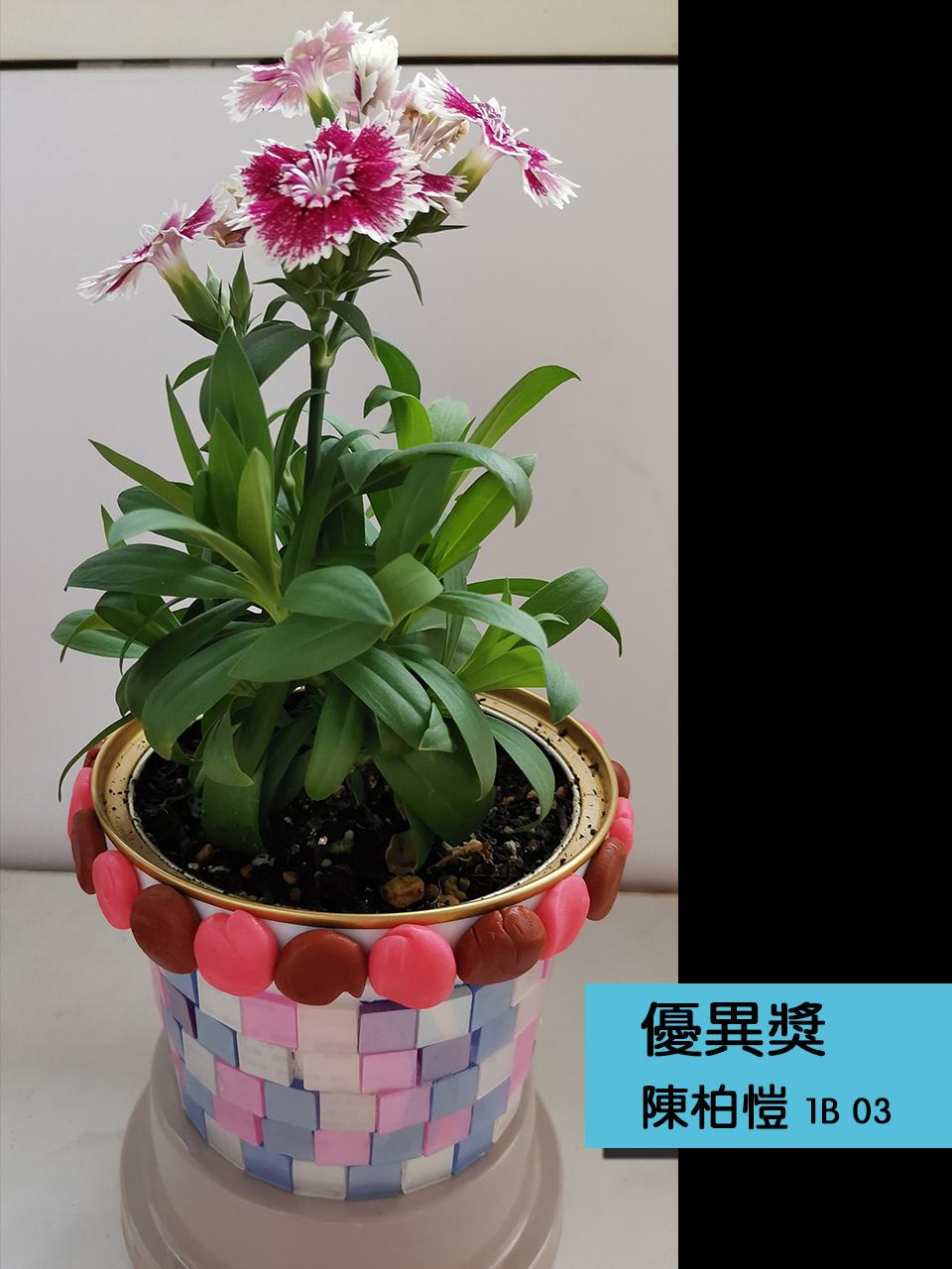 https://plkcjy.edu.hk/sites/default/files/you_yi_jiang_1b_03_chen_bo_kai_.jpg