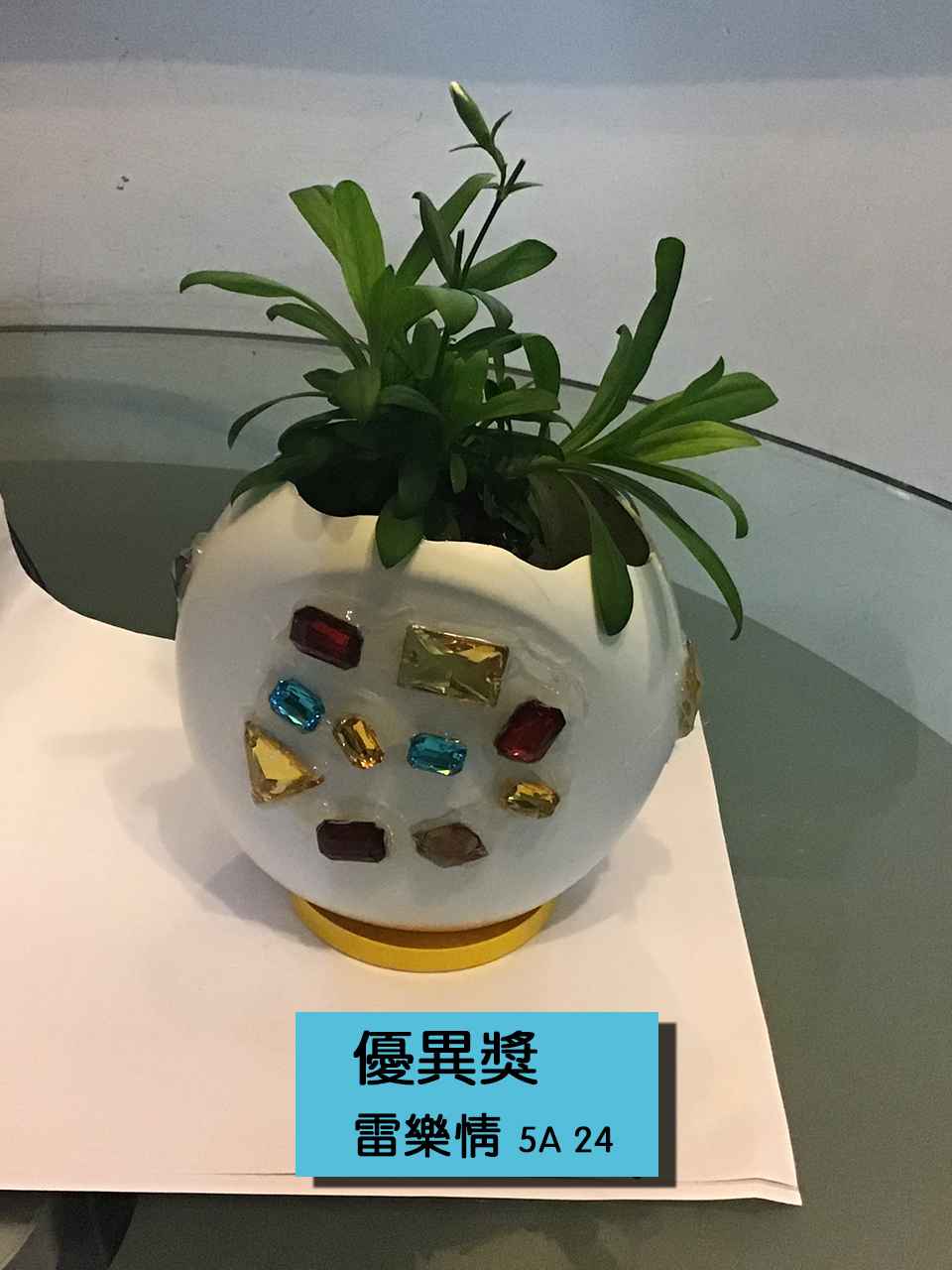 https://plkcjy.edu.hk/sites/default/files/you_yi_jiang_5a_24_lei_le_qing_.jpg