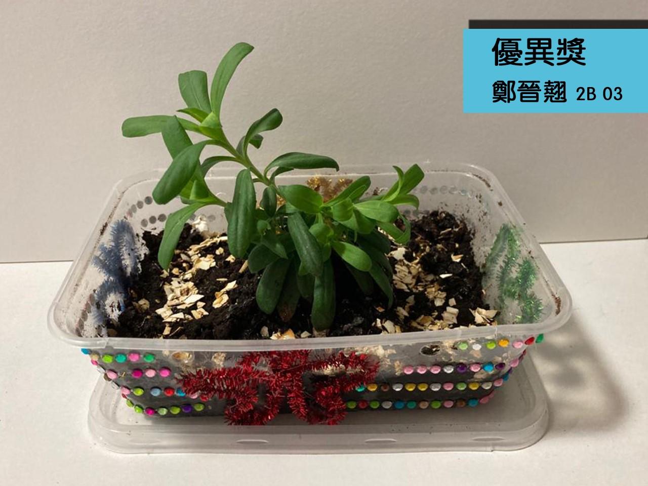 https://plkcjy.edu.hk/sites/default/files/you_yi_jiang_99_2b_03_zheng_jin_qiao_.jpg